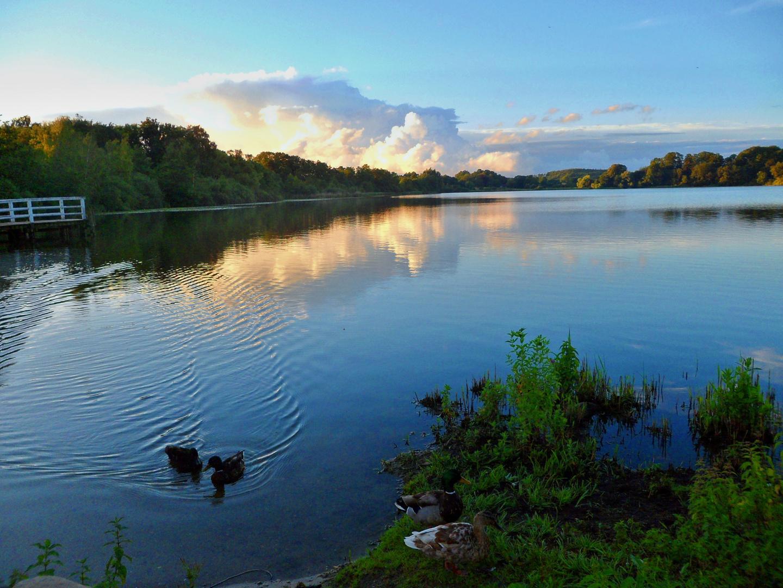 Kellersee im Sommer