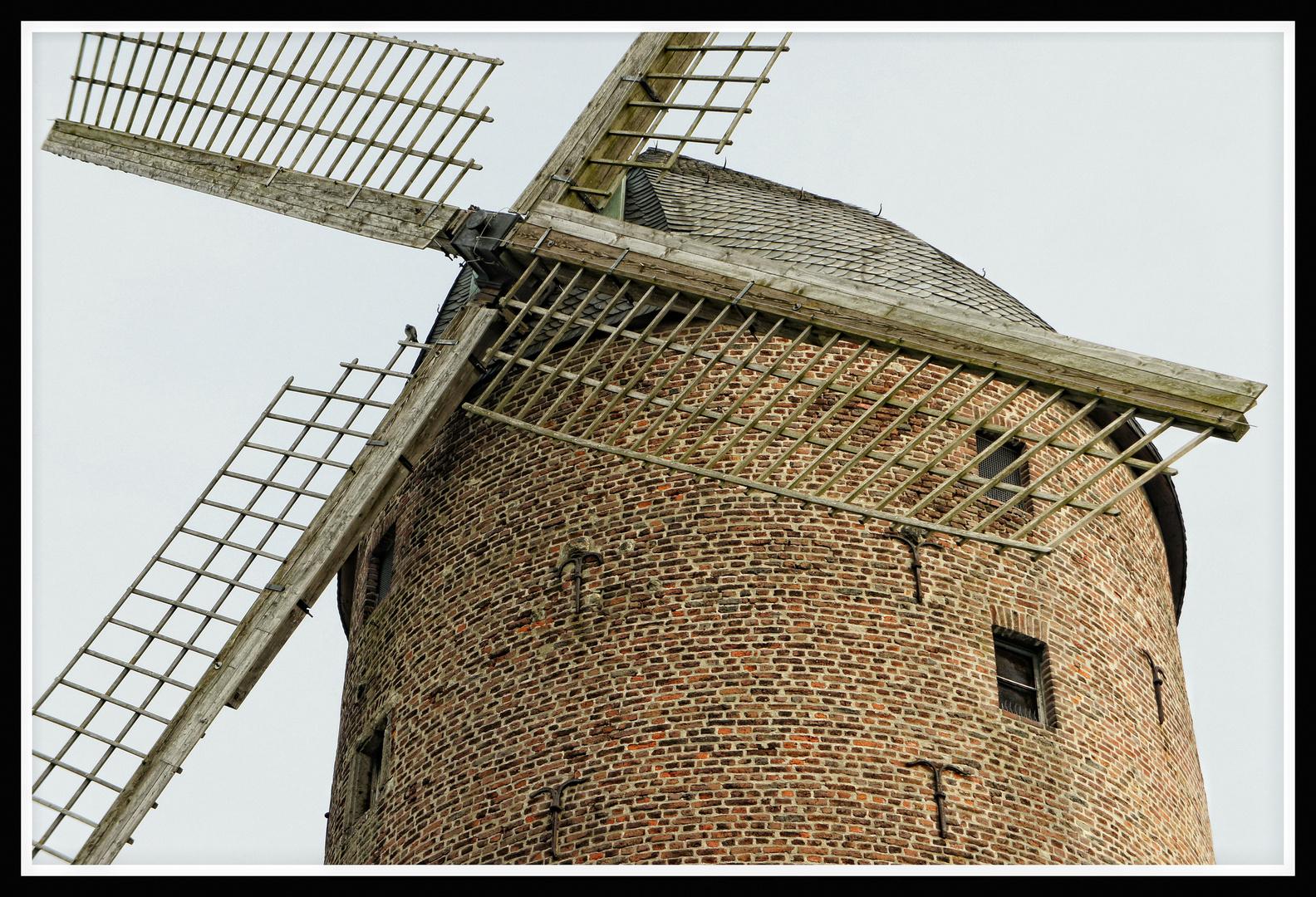 Kempen : Turmwindmühle