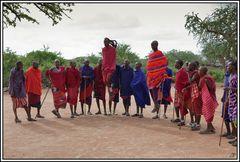 Kenia-Eindrücke, Safari 43