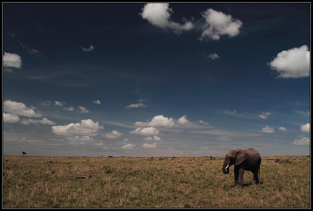 Kenia Rundreise X