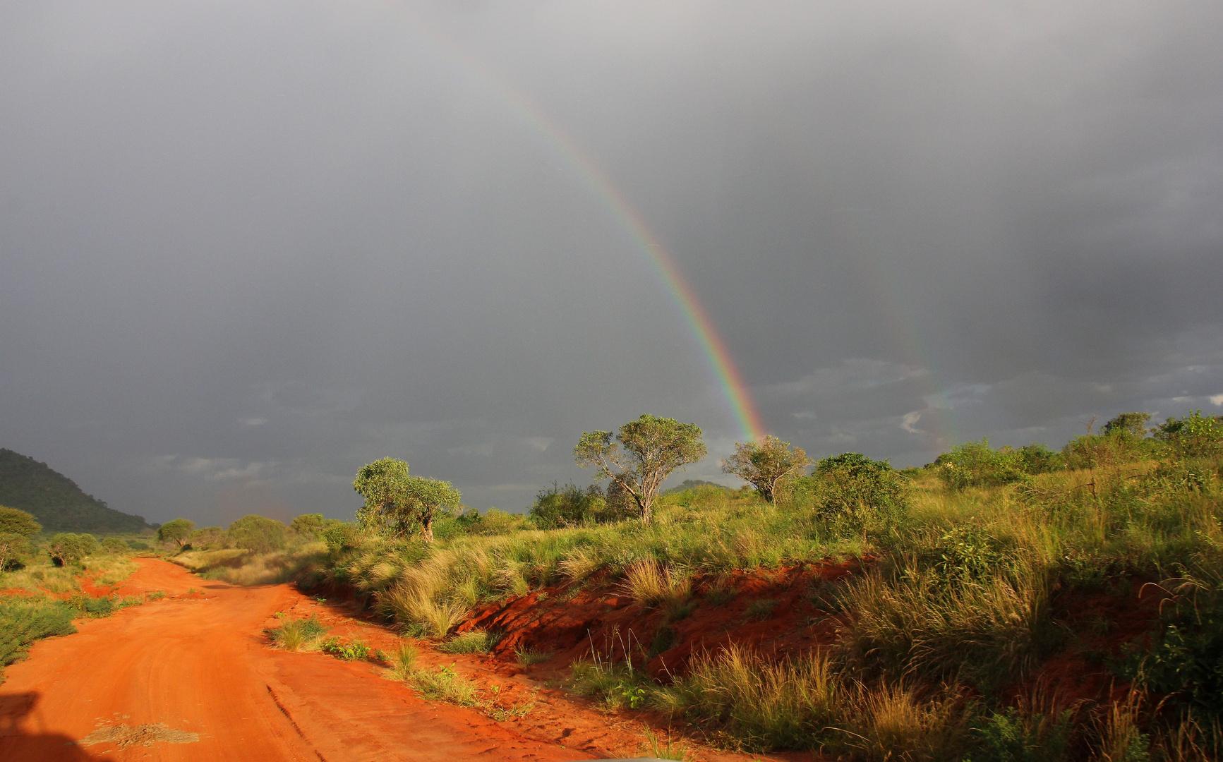 Kenia - Tsavo Ost