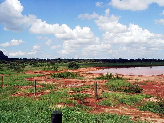 Kenia-Tsavo Ost Nationalpark