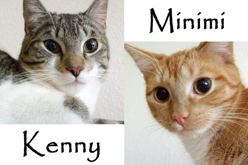 Kenny und Minimi
