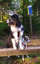 Keny und Fany im Vitaparcour