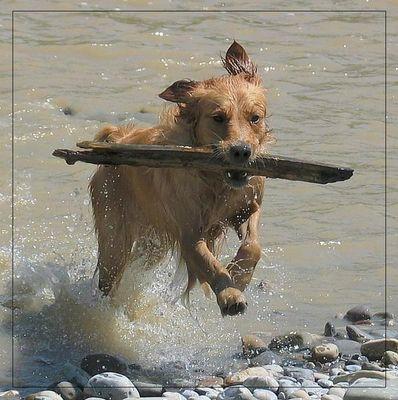 Kenza beim Wassersport