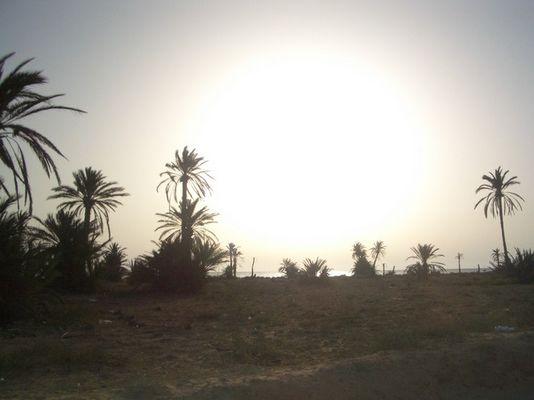 Kerkennah (Insel in Tunesien)