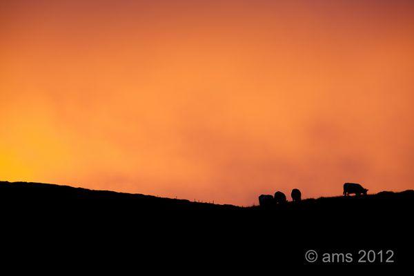 Kerry sunset