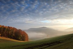 Kesselbachtal im Morgennebel
