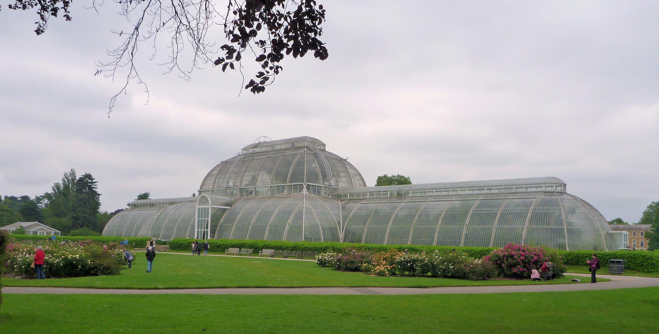 Kew Gardens ein Gewächshaus....der EXTRA Klasse ;)