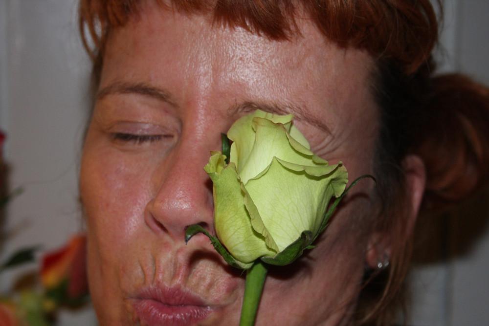 KEY LIME PIE ROSE KISS
