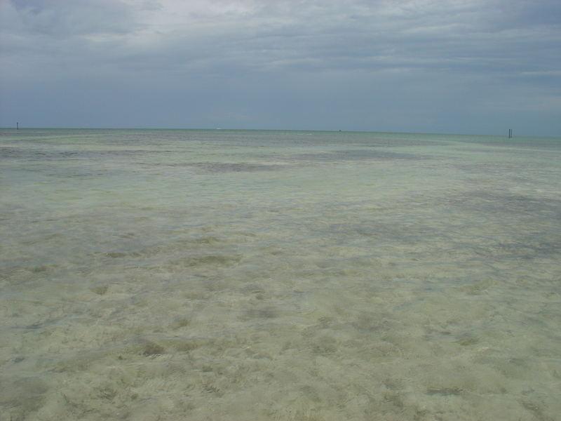 Key West luglio 2007, un mare che sembra deserto...