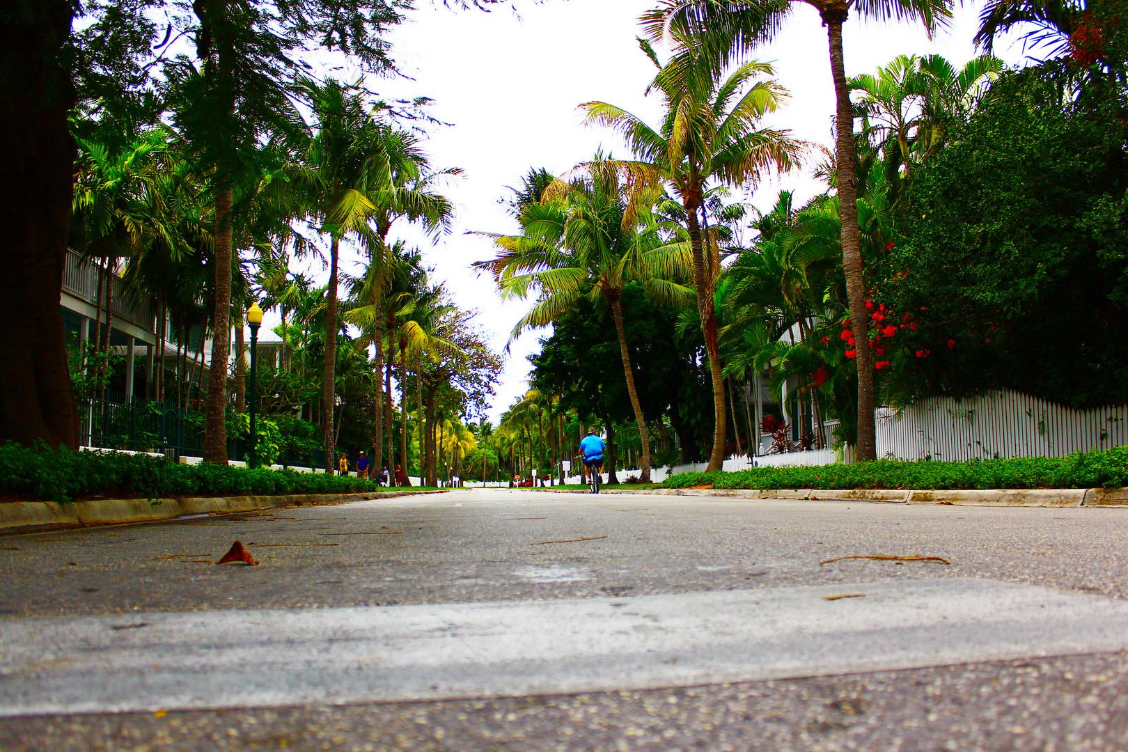 Key West Steet