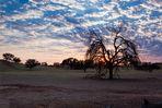 Kgalagadi Sunrise