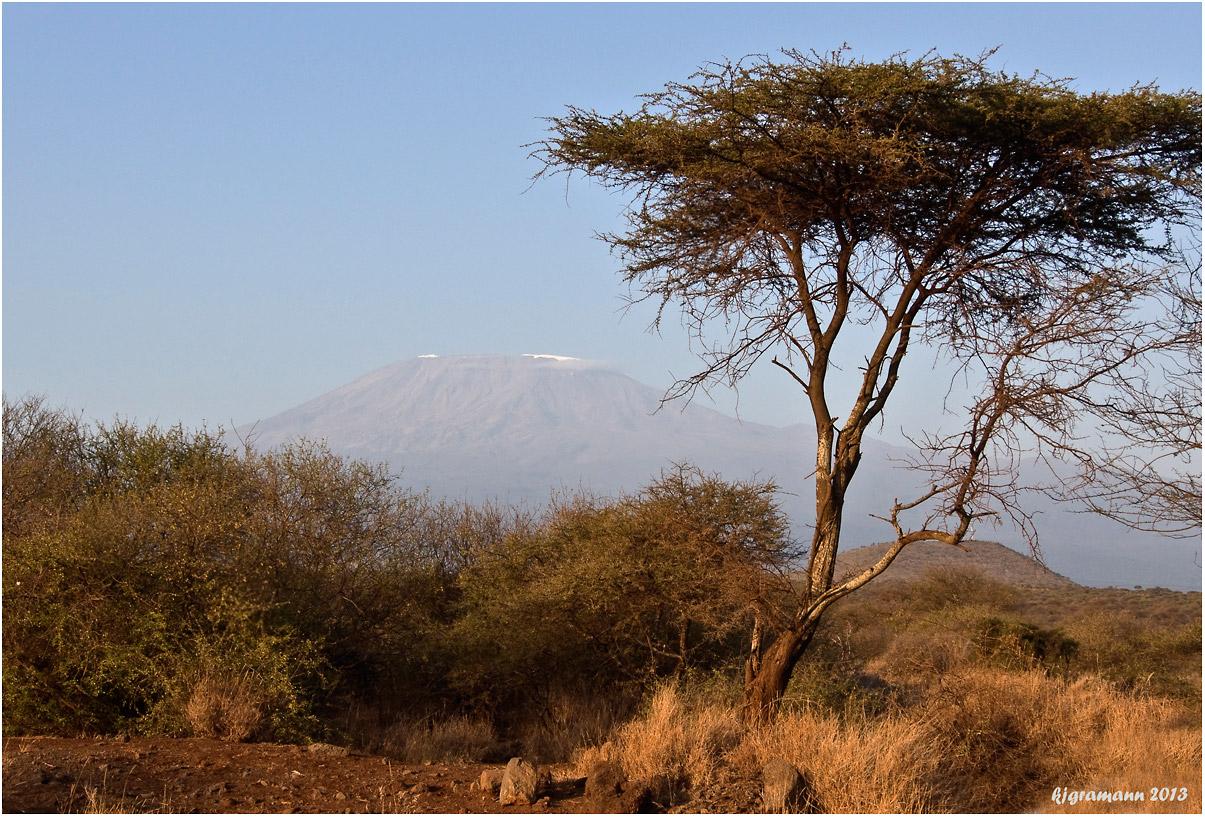 KIBO - kilimanjaro....