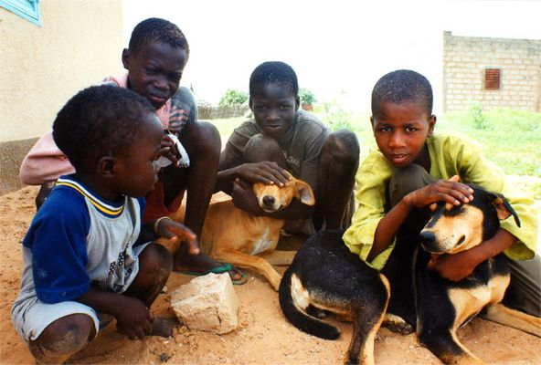 Kids and dogs - Bayakh