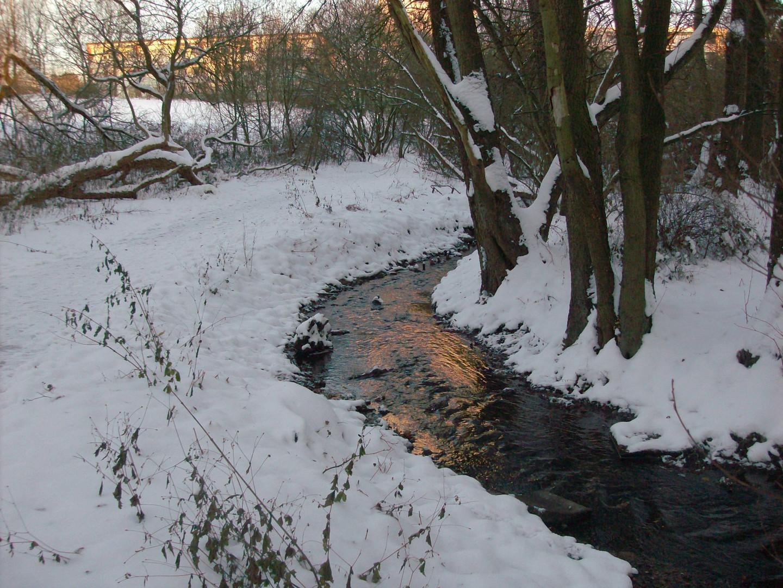 Kieler Tröndelau im Winter