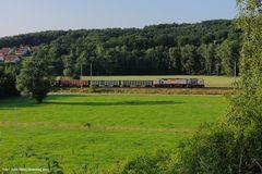 Kies aus Immelborn, Aufnahme bei Schönau (Hörsel), 250 004, Juli 2013