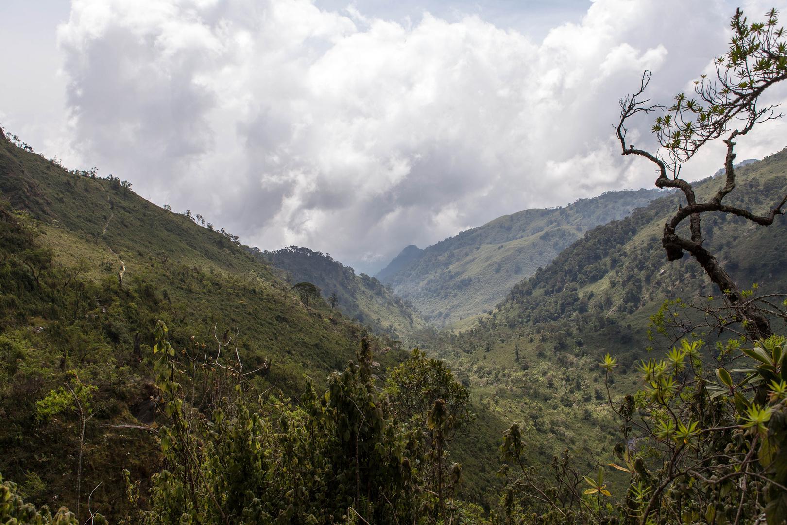 Kilembe trail - Tag 2