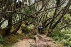 Kilembe Trail - Tag 4