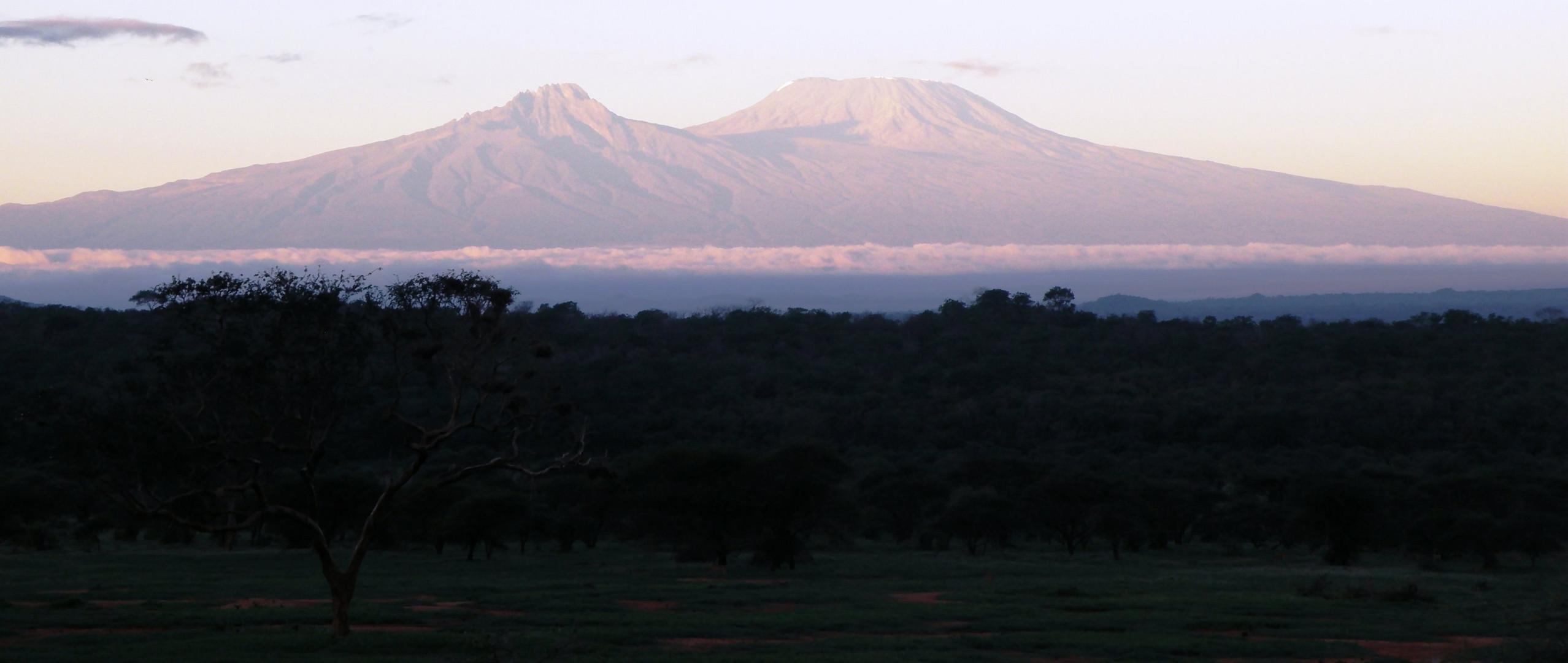 Kilimandscharo im ersten Morgenlicht