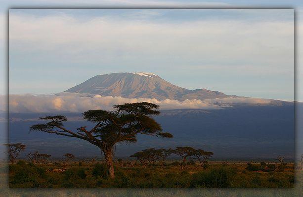 Kilimanjaro III
