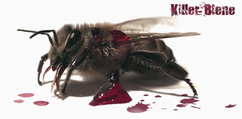 Killer-Biene