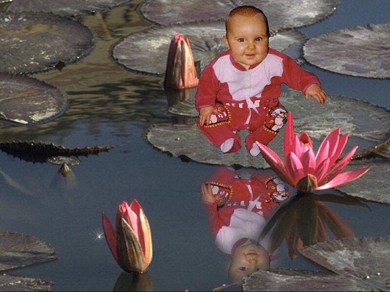 Kind auf Seerosenblatt