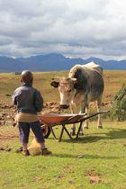Kind in Lesotho - Malealea