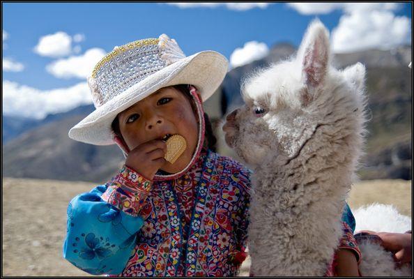 Kind mit einem Alpacababy