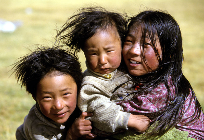 Kinder der Steppe von Harald Geiger