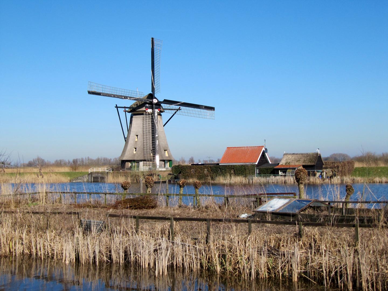 Kinderdijk ( 2013 )