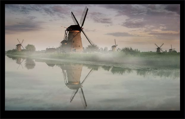 Kinderdijk misty mood