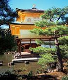 KINKAKUJI - der goldene Tempel