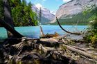 Kinney Lake, Mt. Robson PP, Canada