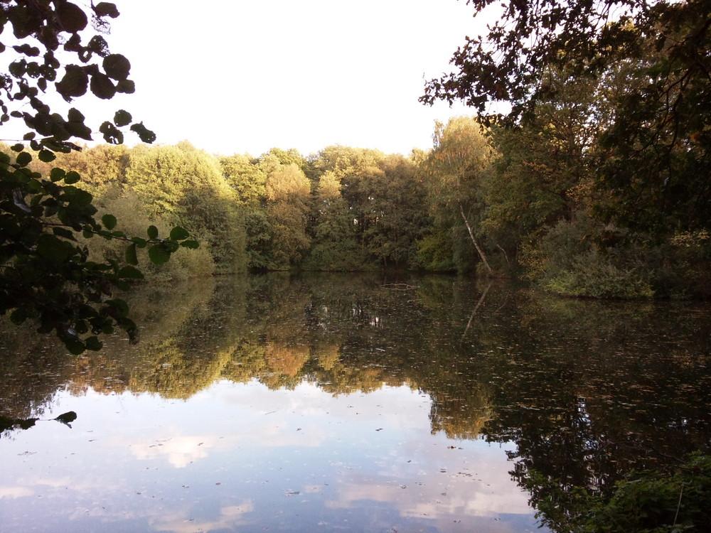 Kipshagener Teich in Schloß Holte-Stukenbrock (Herbst)