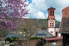 Kirche in Wallhausen
