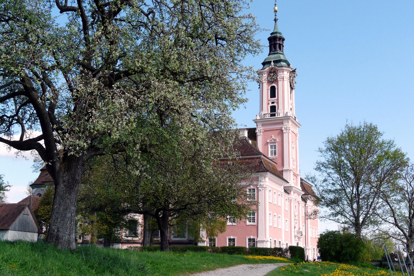 Kirche von Birnau im Frühling