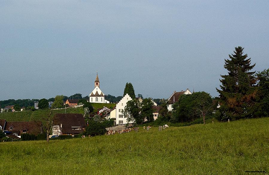 Kirche von Rheinau