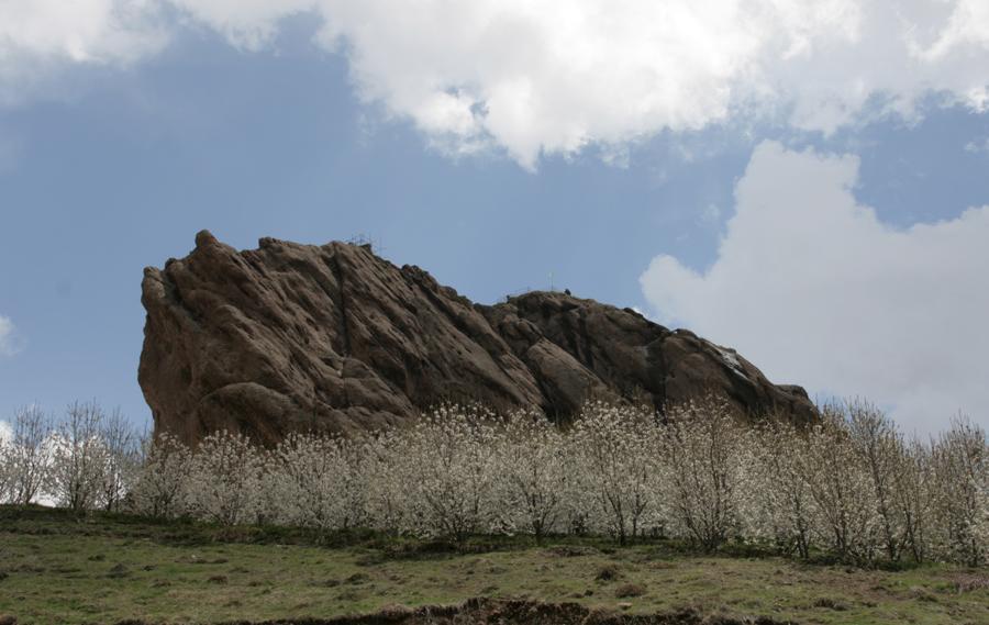 Kirchenbäume blühen, Der Berg von Alamut Festung