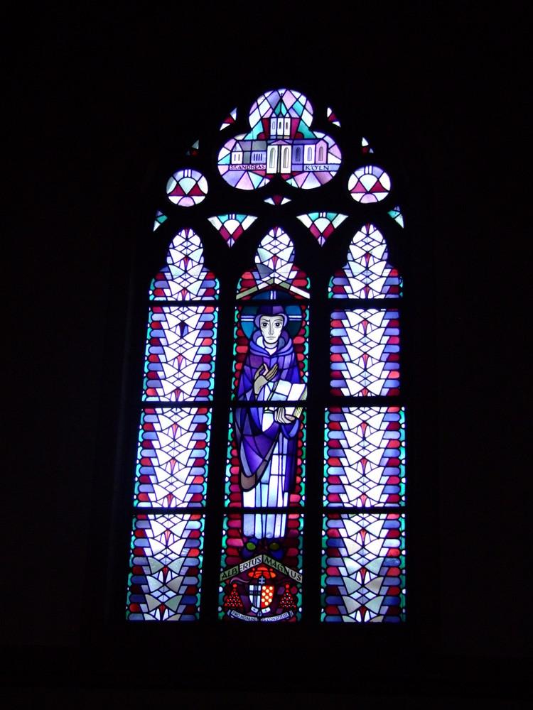Kirchenfenster  Albertus  Magnus