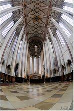 Kirchenspinne