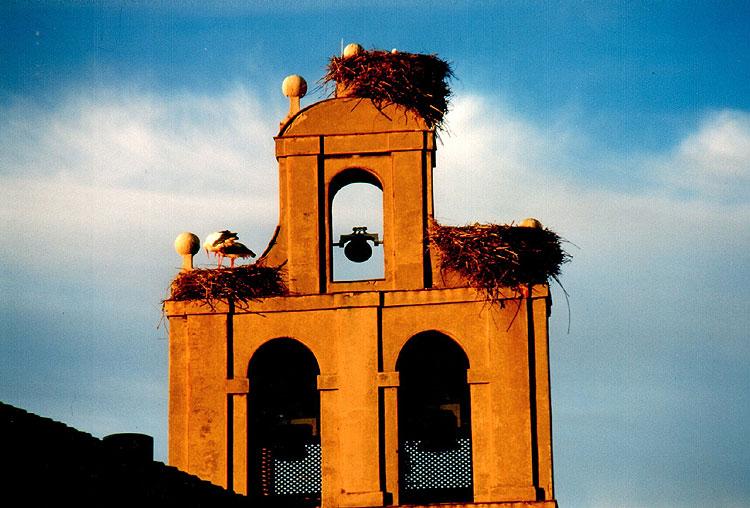 Kirchturm in León