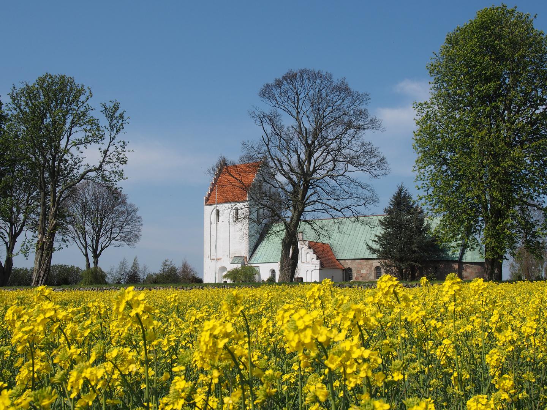 Kirke Skovby