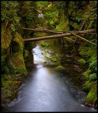 Kirnitzschtal Wilderness