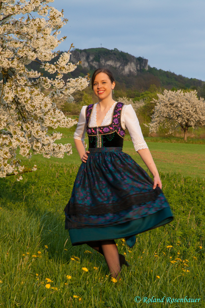 Kirschblüte in der Fränkischen Schweiz