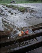 Kirschwasser ....