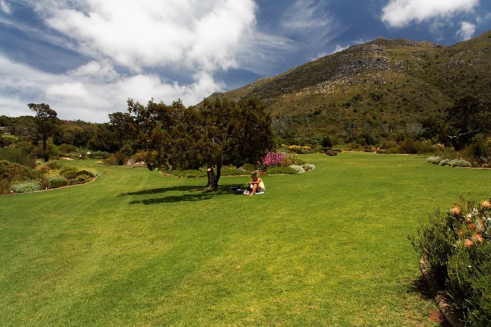 Kirstenbosch National Botanical Gardens 23