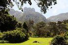 Kirstenbosch National Botanical Gardens 58