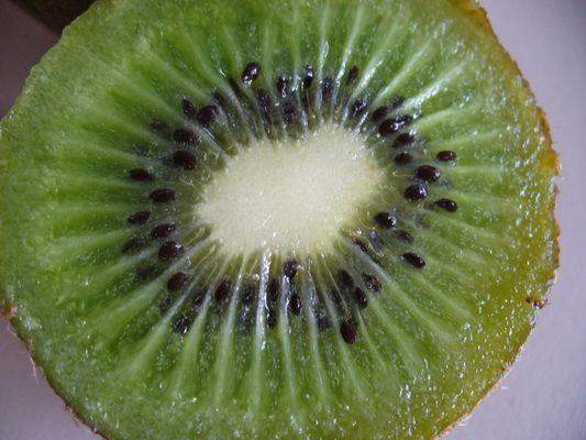 *Kiwi*