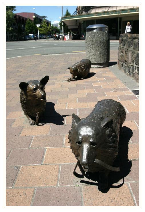 Kiwi Humor ist...